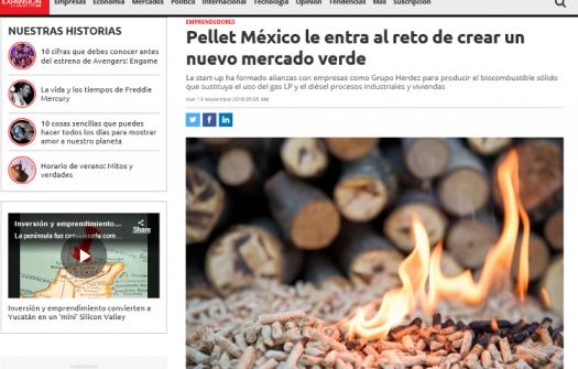 Pellet Mexico le entra al reto de crear un nuevo mercado verde